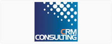 crmconsulting