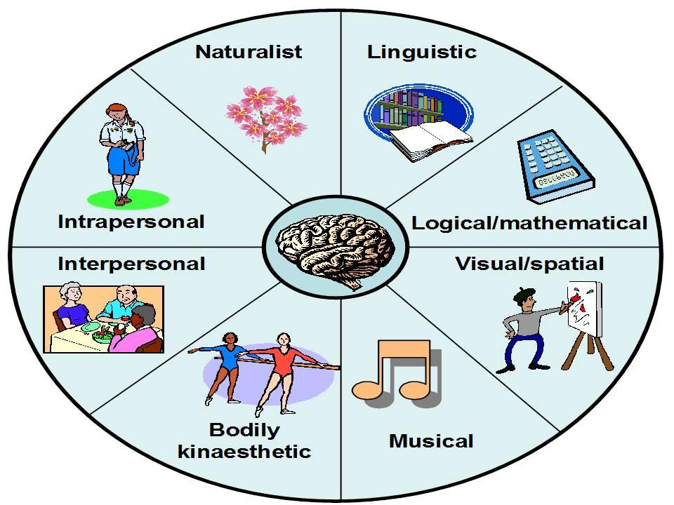 Identifier les Intelligences multiples dans la gestion des hauts potentiels